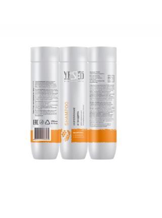 Шампунь YPSED для поврежденных и окрашенных волос